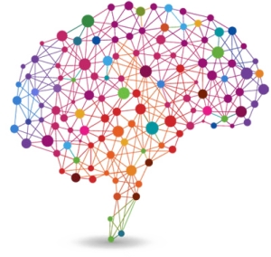 Les neurosciences, la grande illusion en éducation (1)